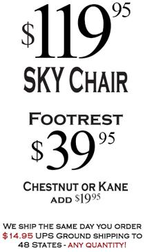 $89.95 SKY Chair